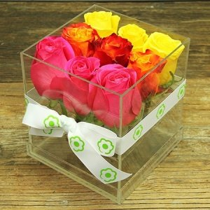 Tutti Frutti Rose Cube Flowers Delivered Sydney