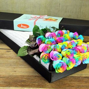 Two Dozen Long Stem Rainbow Roses (Sydney Only)