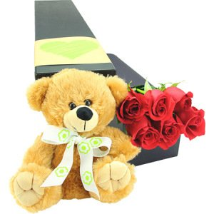 6 Long Stem Red Roses with Love Bear