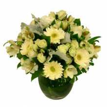 Cheap Flowers Brisbane : Aussie Same Day Flower Delivery