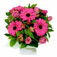 Valentines Day Gift Same Day Delivery : Australia Flower Delivery Melbourne