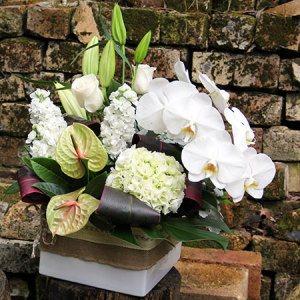 Bayjunctionfloristcomau : Australia Flower Delivery