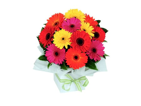 Summer Flowers - Gerbera Box