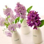 Little bottle vases of sweet pea and hyacinth stems