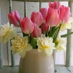 Spherical vase of jonquils and tulips