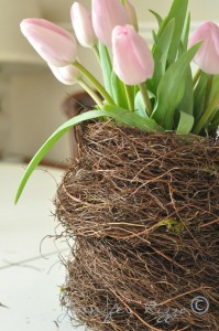 Tulips in nested basket