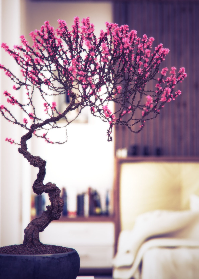 15-interior-design-using-bonsai-tree