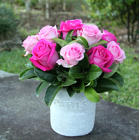 Pink Roses in Paris Pot