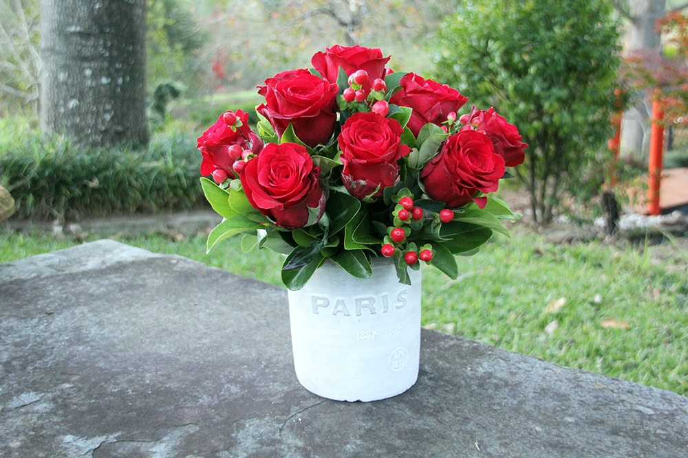 paris red roses