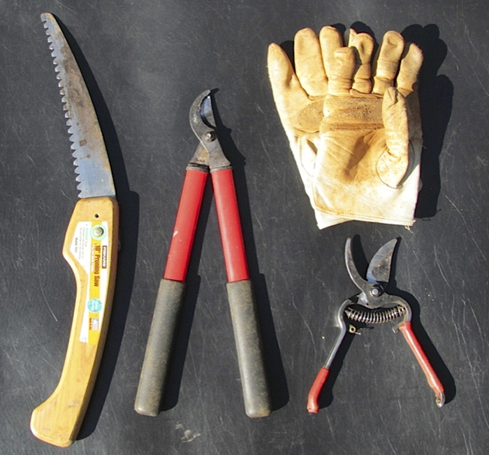 pruning-tools