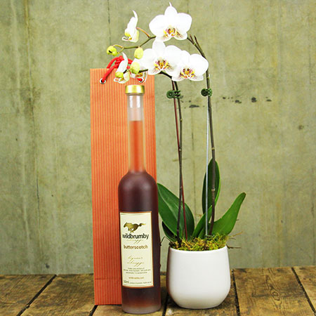 Orchid-and-schnapps